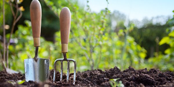 Responsible Gardening Reaps Countless Blessings