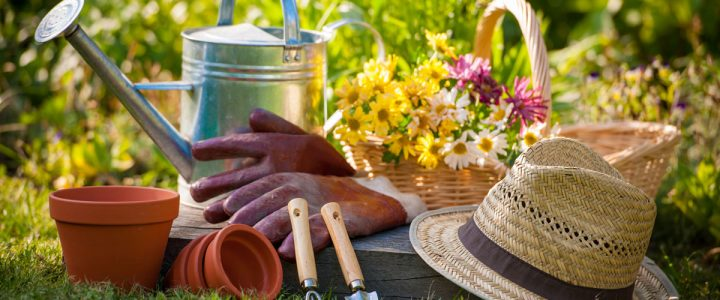 Why Gardening is As Easy As One, Two and Three?